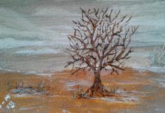 Desert Snow 4x6 Acrylic