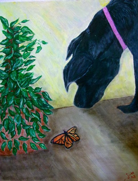 Discovery: Aspen, black Lab mix, learns that Creativity is fining the special in the every day.  Acrylic 11x14 Acrylic Boarrd